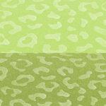 Verde Chiaro-Verde Scuro